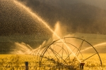 Irrigation near Enterprise, Oregon. Photo by Wendy Beth Oliver